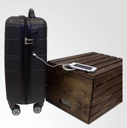 Ryder Suitcase